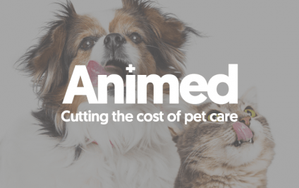 Animed Direct sees revenue uplifts with abandonment emails and dynamic content